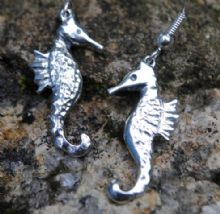 Seahorse earrings E43